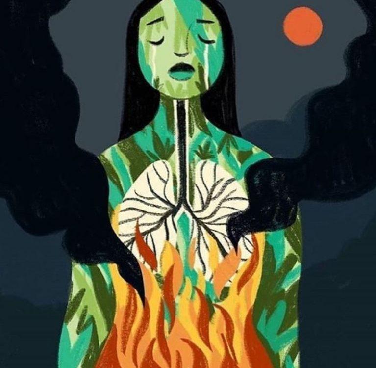 amazona požar