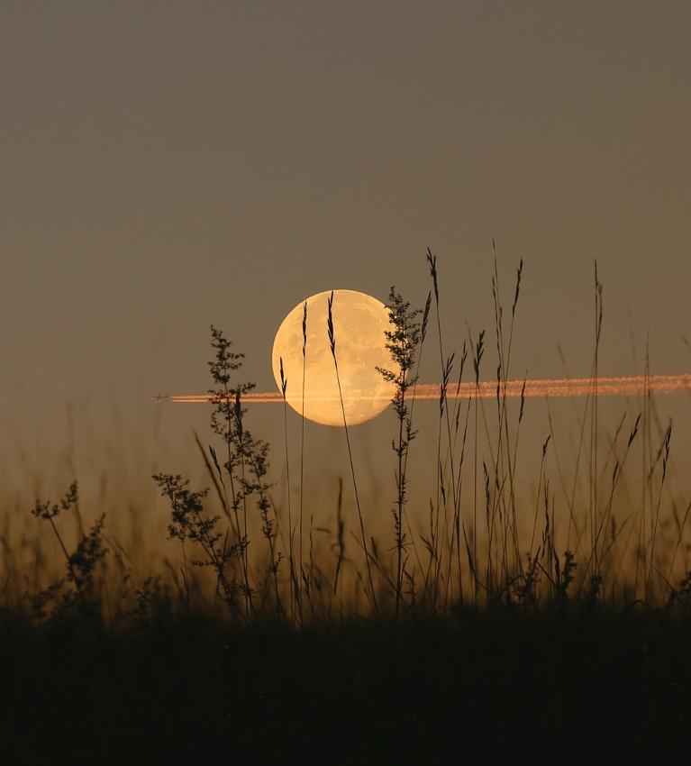 pun mjesec značenje