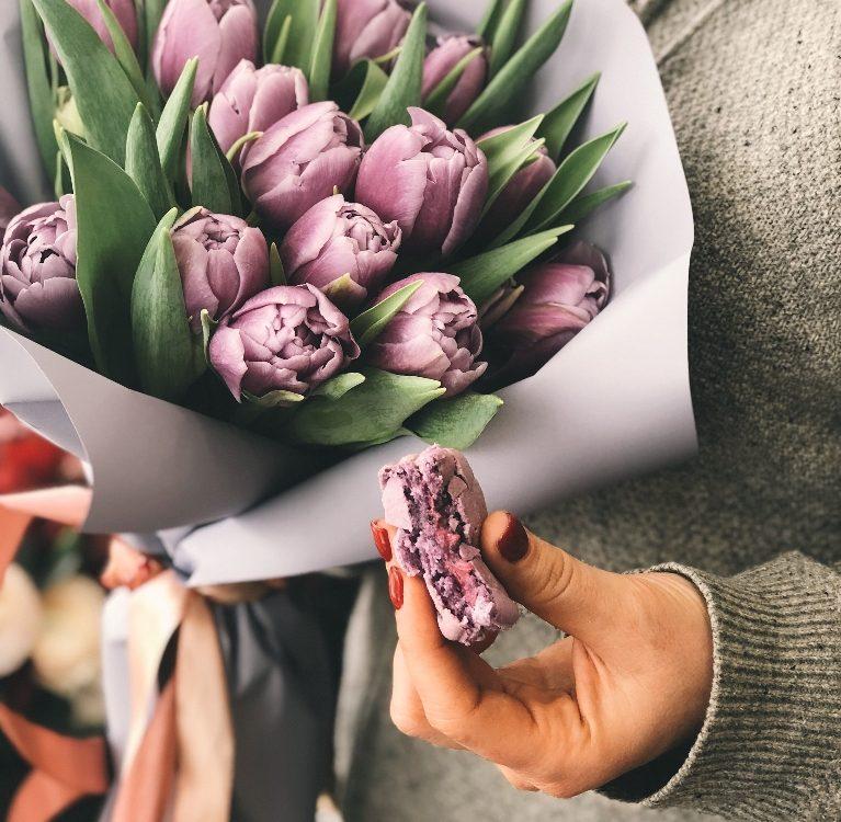 tulipani činjenice